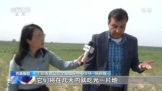 中国工作组:巴基斯坦的情况比预想还严重