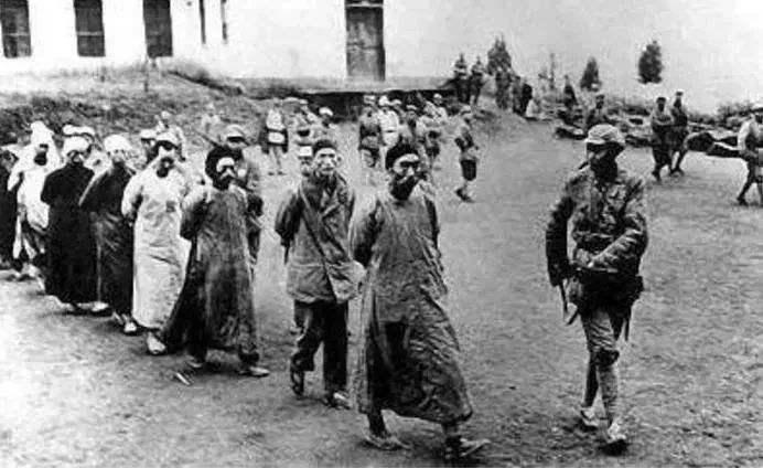 山东省境内曾经有20万土匪,为何2年内就全被剿灭了?