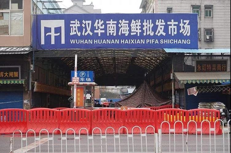 触目惊心!武汉肺炎始发地华南海鲜市场,鲜为人知的照片曝光!