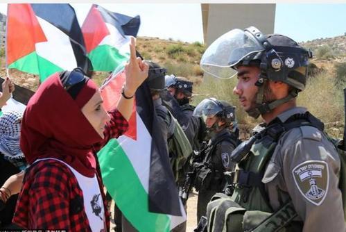 美国行为卑鄙无耻:中东和平计划还未成型就反咬以色列