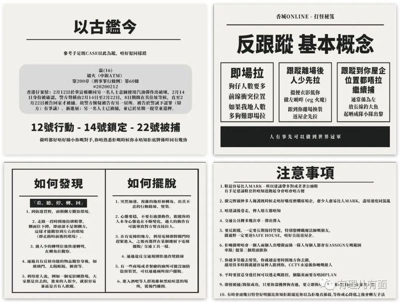 """幻想中""""勇武""""的曱甴:野猫式伏击香港警员"""