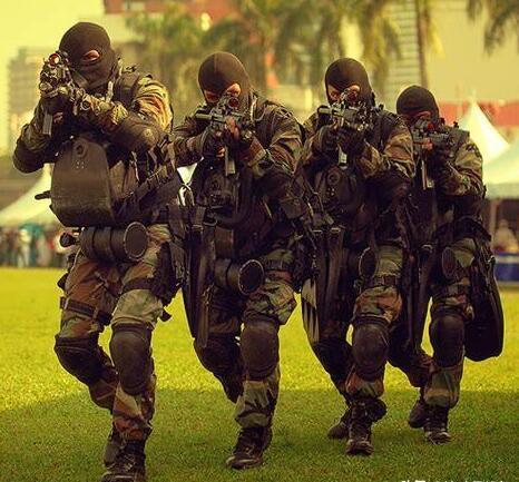 马来西亚竟有一支专门对付解放军的神秘部队!