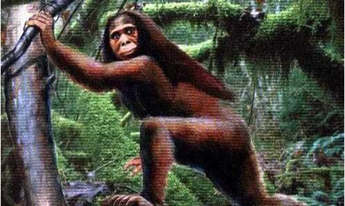 """被称为野人后代不会说话从不生病,揭秘神农架神秘""""猴娃""""!"""
