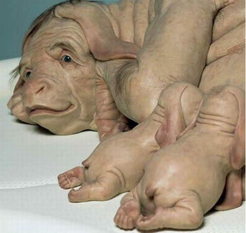 世界第一个人猪杂交胚胎合成,或成世界首例人猪杂交!