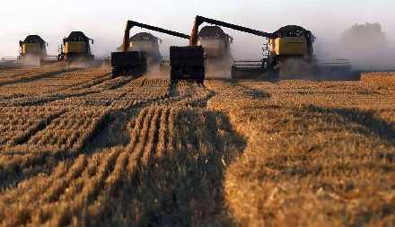 中俄达成协议,俄送上100万公顷土地,解决我国难题