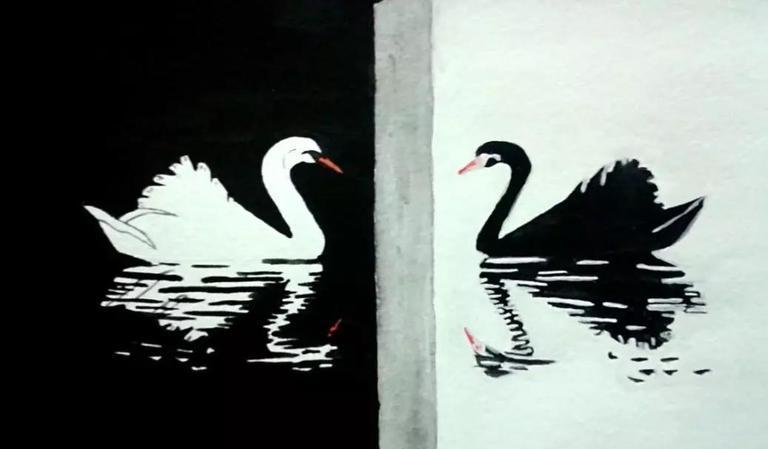2020年刚开始三只黑天鹅已经来了!美日台格外扎心
