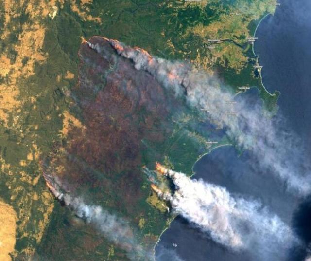 山火烧了4个月,澳政府终于要有所作为了!莫里森下达历史性命令