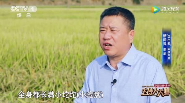 为什么要在非洲发展杂交水稻?袁隆平用英文回答