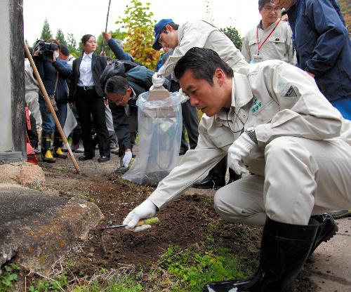 韩国人在日本大使馆附近贴讽刺画:火炬手穿防化服 圣火变绿火