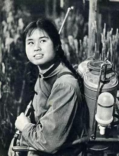 知青老照片,城里娃去了农村,在今天看来是一段珍贵难得的记忆
