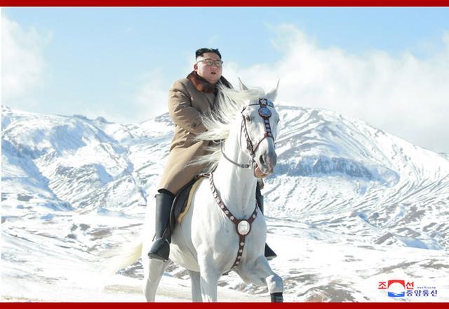 """俄方揭秘金正恩所骑白马正体,朝鲜""""骑马文化""""盛行"""