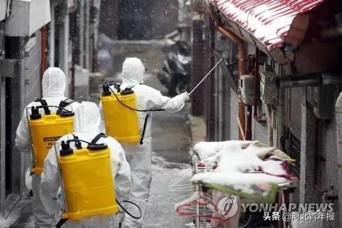 新冠肺炎仍在蔓延:韩国发生超级传播事件,日本确诊患者超700例