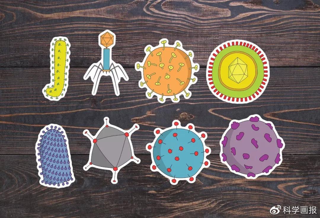盘点:人类历史上最骇人的十大病毒