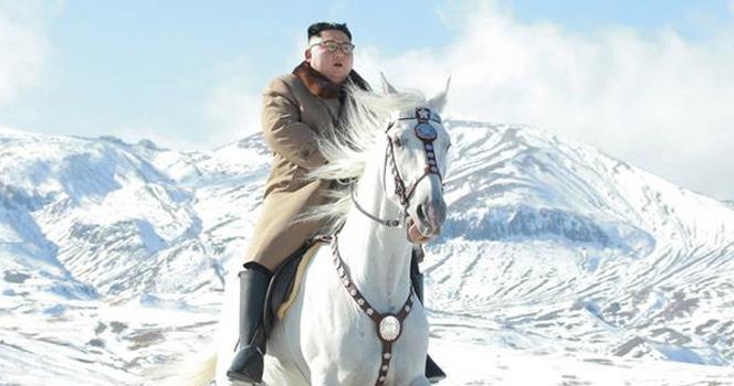 金正恩所骑的白马有什么来头?俄媒给出惊人答案