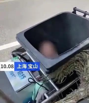 上海一女子与丈夫前妻赌气 竟将自己亲生孩子扔进垃圾桶 网友:配做父母吗?