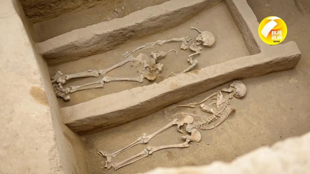 陕西最新发现!这里遗存多处活人殉葬墓!殉葬女性曾遭刀劈,手段极残忍!