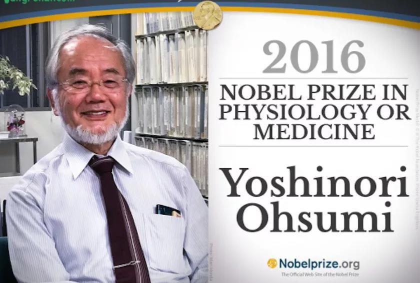 """""""日本人可能再也不会得诺贝尔奖了!"""""""