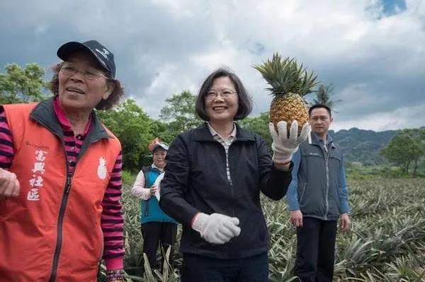 """台湾岛内已经被""""凤梨""""刷屏了,就因为大陆这项政策"""