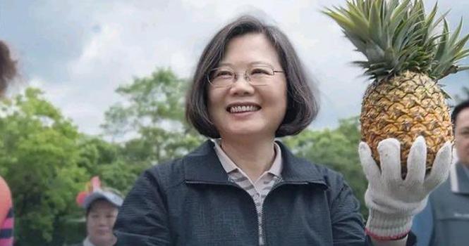 蔡英文号召下,台湾掀起轰轰烈烈的挺凤梨运动!