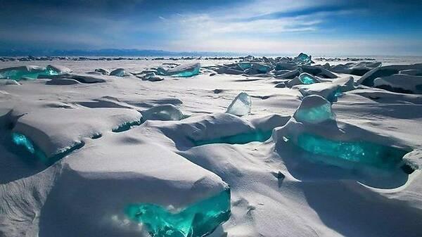 西伯利亚又发现生物尸体,或有5万年时间,对人来说是危险信号?